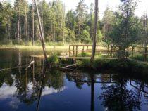 Eestimaa matkarajad: Norra-Oostriku allikad