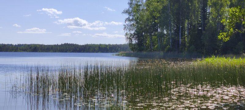 Kurtna järved
